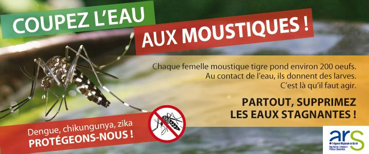 banniere_720x300_moustiques_1